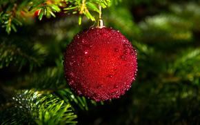 ferie, Giocattoli, ramo, palla, abete rosso, Capodanno, Natale, abete, Natale, Natale, Capodanno, rosso, decorazione, palla
