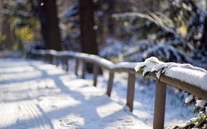 fence, snow, macro, Winter