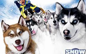 Snow Dogs, Snow Dogs, film, film