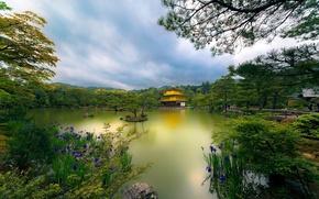 golden pavilion, kyoto, japan, temple, The Golden Pavilion, Kyoto, Japan, lake, Trees, Flowers, park, temple