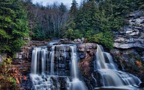 blackwater falls, west virginia, Западная Вирджиния, каскад Блэкуотер, скалы, лес, водопад, каскад