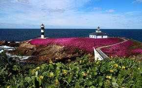 pancha island, galicia, spain, illa pancha, ribadeo, Бискайский залив, побережье, Рибадео, Галисия, Испания, скалы, маяк, цветы, море