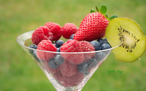Berries, raspberry, strawberry, blueberry, kiwi, goblet