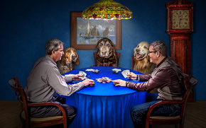 Men, Dogs, cards, game, poker, situation, Chips, watch