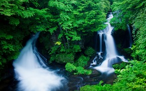 forest, waterfalls, greens, nature, landscape