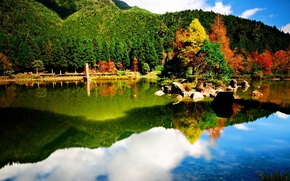 lago, Montagne, foresta