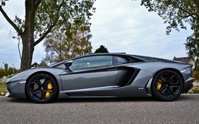 black, sky, CDs, Lamborghini, silver, Trees, profile, aventador, Lamborghini