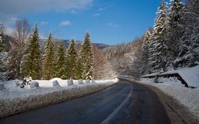Winter, snow, Trees, road
