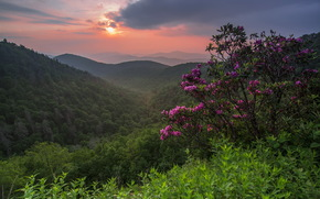Montaas, puesta del sol, paisaje