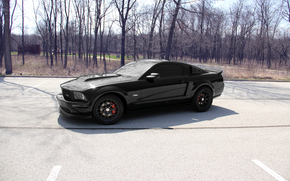 ford, mustang, GT, black, tsw, forest, car, fast, speed, mustang gt, gt500, svt, roush, black on black,