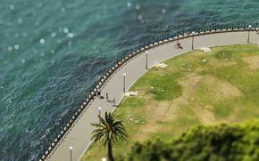clture, pelouse, trottoir, Inclinez Maj, Sydney, lumires, digue, mer, cte, pelouse, blouissement, Australie, paume