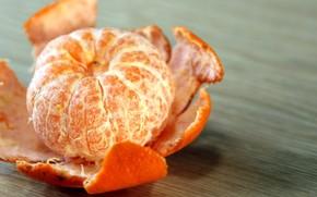 peel, mandarin, mandarin