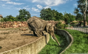 Deutschland, Zoo, Elefant