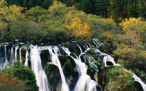 waterfalls, stones, forest