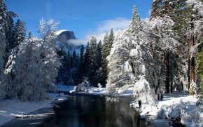 river, forest, Winter, snow