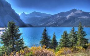 bow lake, banff national park, alberta, canada, озеро Боу, Банф, Альберта, Канада, горы, деревья, озеро