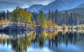 quarry lake, canmore, alberta, canada, Канмор, Альберта, Канада, озеро, деревья, горы