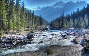 mistaya river, alberta, canada, Альберта, Канада, река, горы, лес, камни