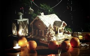 пряничный домик, мандарины, оранжевый, ёлка, фонарики