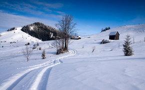 inverno, Hills, alberi, loggia, traccia
