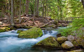 штат Орегон, usa, река, лес, мост, камни, природа, пейзаж