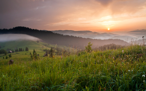 закат, холмы, поле, трава, природа