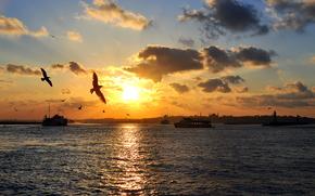 Istanbul, tramonto, mare, Gabbiani, navi