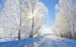road, Winter, landscape