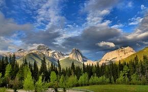 mount lougheed, wind mountain, wind tower, alberta, canada, canadian rockies, Альберта, Канада, Канадские Скалистые горы, лес, деревья, горы