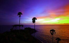 日落, 海, 景观
