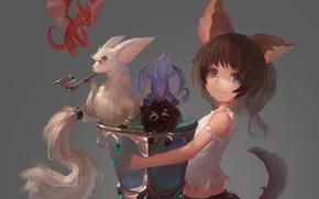 драконы, арт, девушка, животные, крылья, аниме, ушки, сумка, трубка, хвост