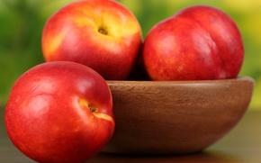 nectarine, fruit, peaches, plate