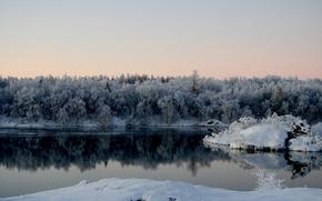 lago, bosque, invierno, nieve