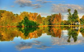 paesaggio, foresta, lago, autunno