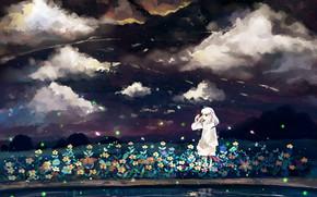 светлячки, водоём, арт, цветы, облака, небо, девочка, ночь, аниме