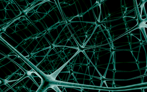 neurons, Network, Contact