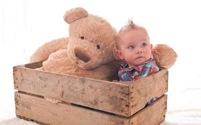 хаер, мальчик, игрушка, ящик, ребёнок, плюшевый медведь