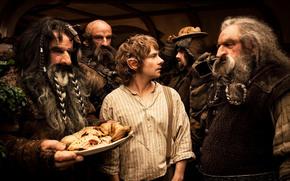 Bilbo Baggins, Viaggio Inaspettato, Gnomi