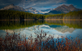Canada, lake, Mountains, reflection, forest, shrubs