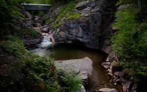 pont, rivire, parc national, Sion