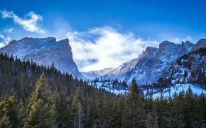 parco nazionale delle Montagne Rocciose, co, Montagne, foresta, inverno,