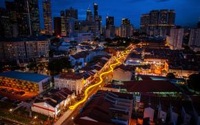 Singapour, nuit, route, lumires, serpent, clbration du calendrier lunaire chinois