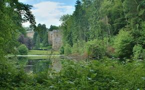 beaufort castle, luxembourg, Трава, пруд, лес, замки, Природа