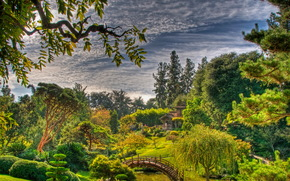 Сады, США, botanical san marino, Калифорния, hdr, Природа
