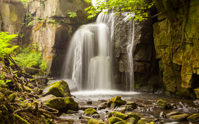 waterfall, spray, rocks, stones, Trees, branch, the roots, moss