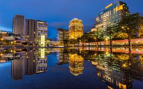 taiwan, Taiwan, TAIPEI, La Rpublique populaire de Chine, Gratte-ciel, btiment, Ville, nuit, lumires, arbres, route, extrait