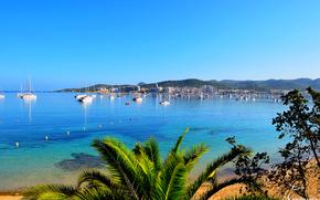 Ibiza, mare, Barche a vela, Barche, palma, paesaggio