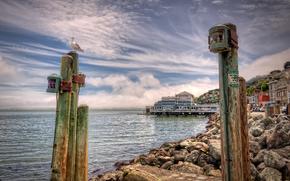 San Francisco, baia, pietre, edificio, Pilastri, gabbiano, paesaggio