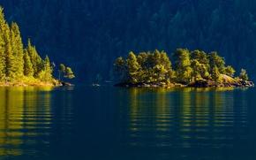 cowichan lake, vancouver island, canada, Lake Kauichan, Vancouver Island, Canada, islet, forest, Trees, water, lake
