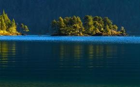 cowichan lake, vancouver island, canada, озеро Кауичан, остров Ванкувер, Канада, островок, лес, деревья, вода, озеро